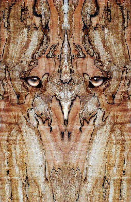 Wood Veneer Artwork
