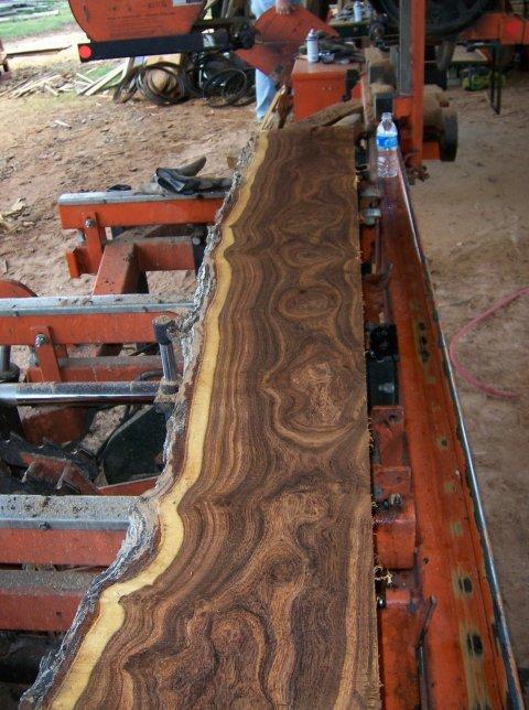 M Amp G Sawmill