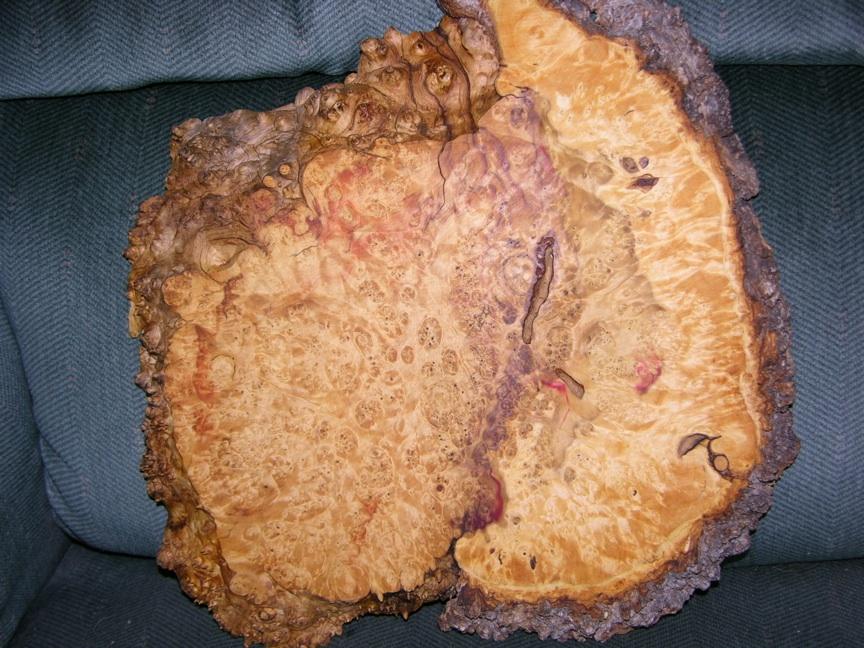 box elder burl wood