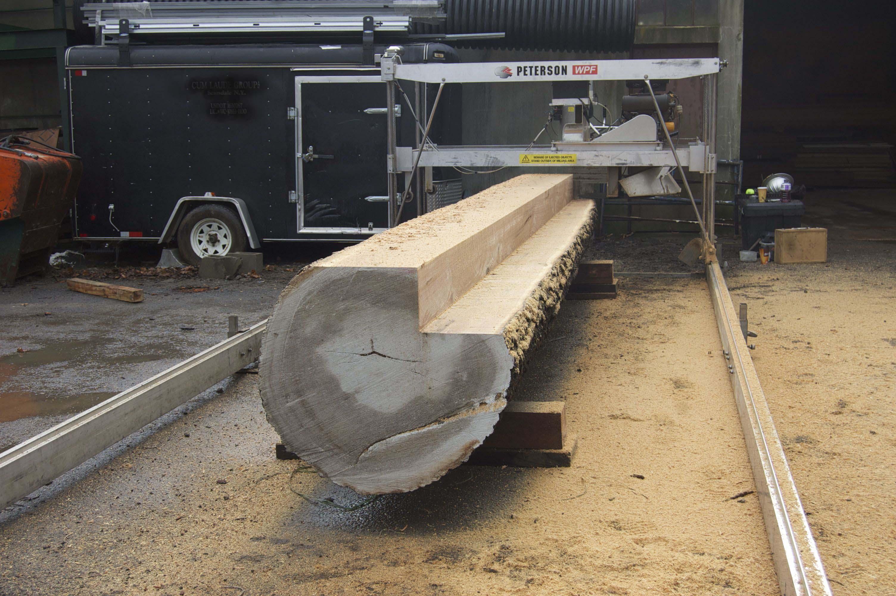 Terrific Timbers Llc