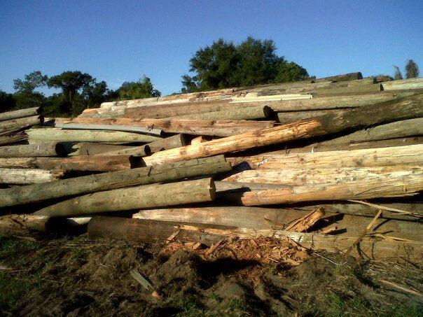 Deep South Cypress Amp Cedar Creation