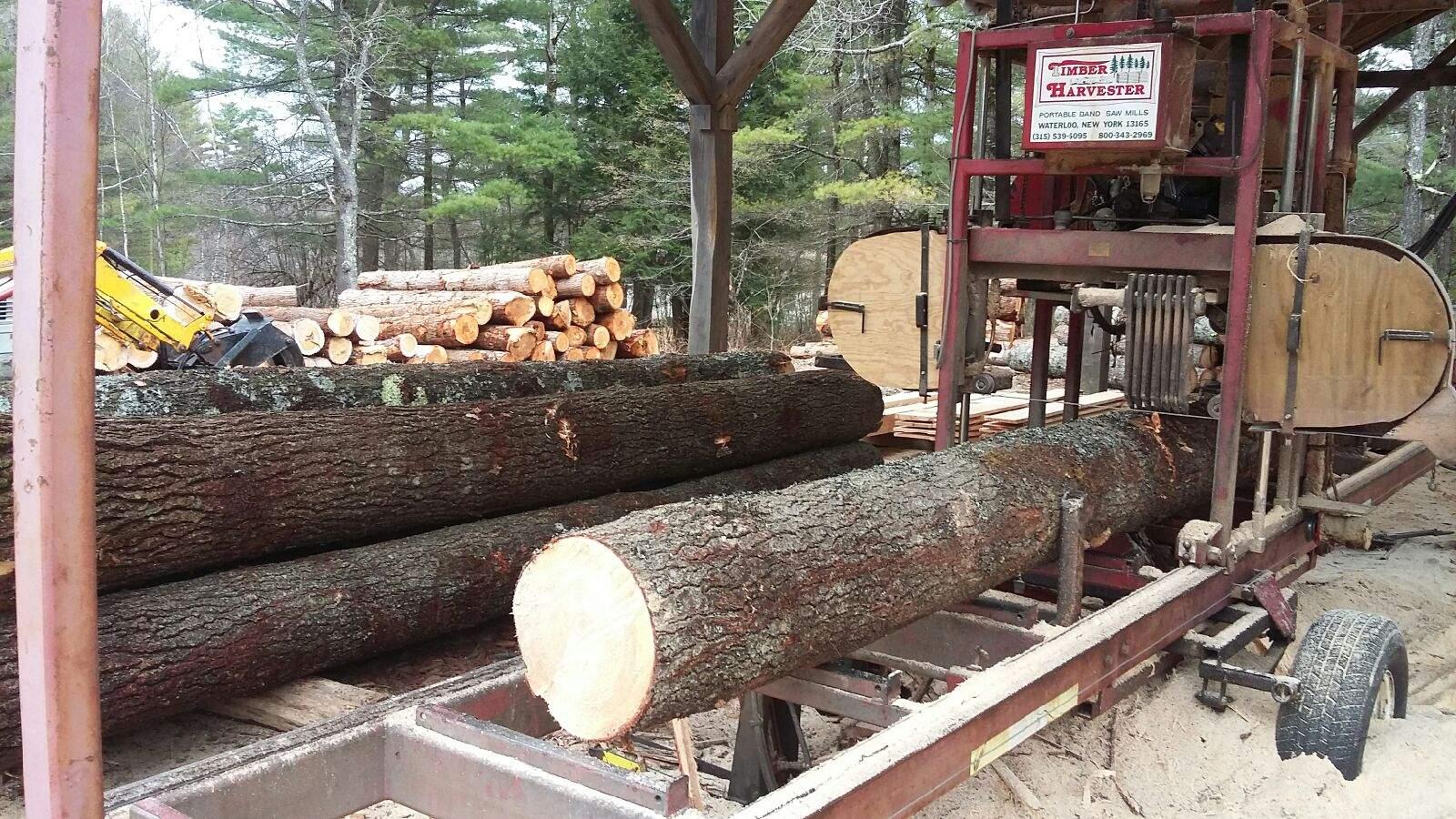 new uploads at woodweb