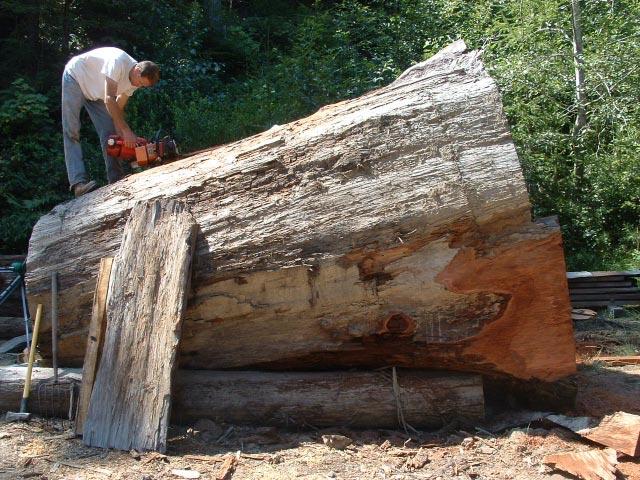 Sequoia Vista Enterprises