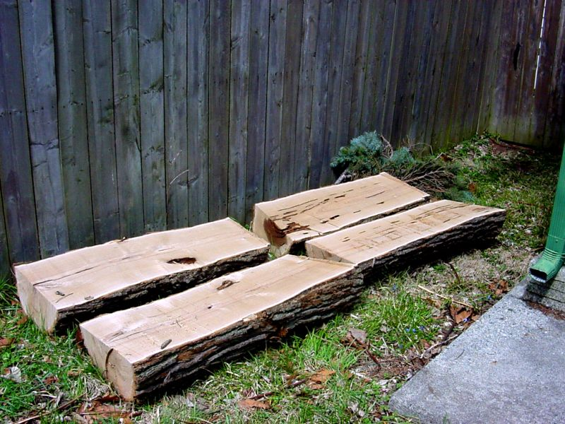 Drying Split Catalpa Logs For Benches