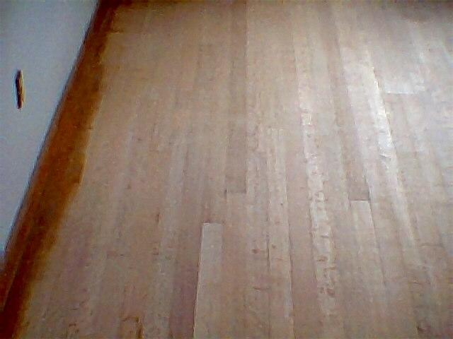 Pet urine odor wood floor