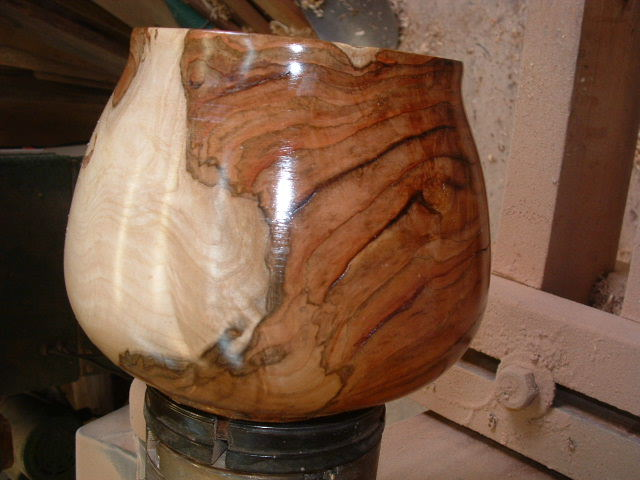 Click here for higher quality  full size image. Burl Wood in the American Sycamore