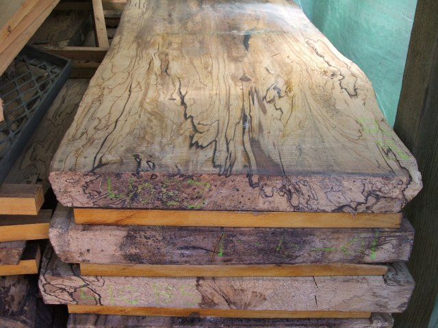 Sweet Gum To Frame A Work