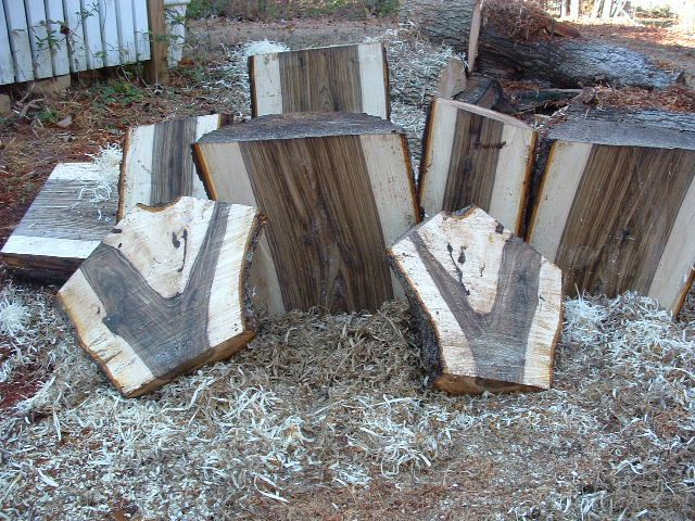Wood Identification Problem (Western Walnut)